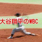 大谷翔平野球人生最後のWBCをもっと大々的に報道してくれ!